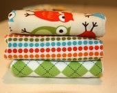 Owl boutique burp cloth set