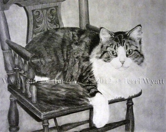 Custom Pet Portrait From Your Photo - 5x7 Original Cat Pencil Sketch Art Drawing From Picture
