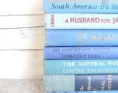 Blue Books Instant Library Collection Decorative Vintage Book Bundle Photography Props Shades of Blue