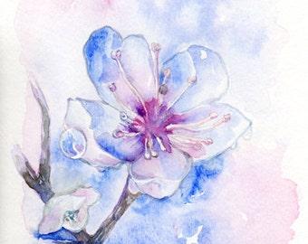 Original Watercolour Flower painting - Blossom