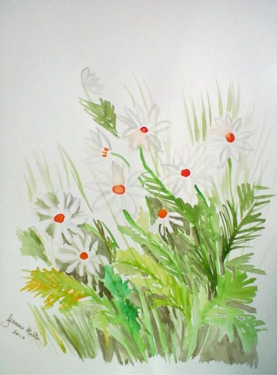 Daisies Watercolor