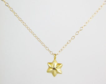 Puff Star Necklace. 24K Vermeil charm pendant gold filled chain. Everyday jewelry by smoketabby