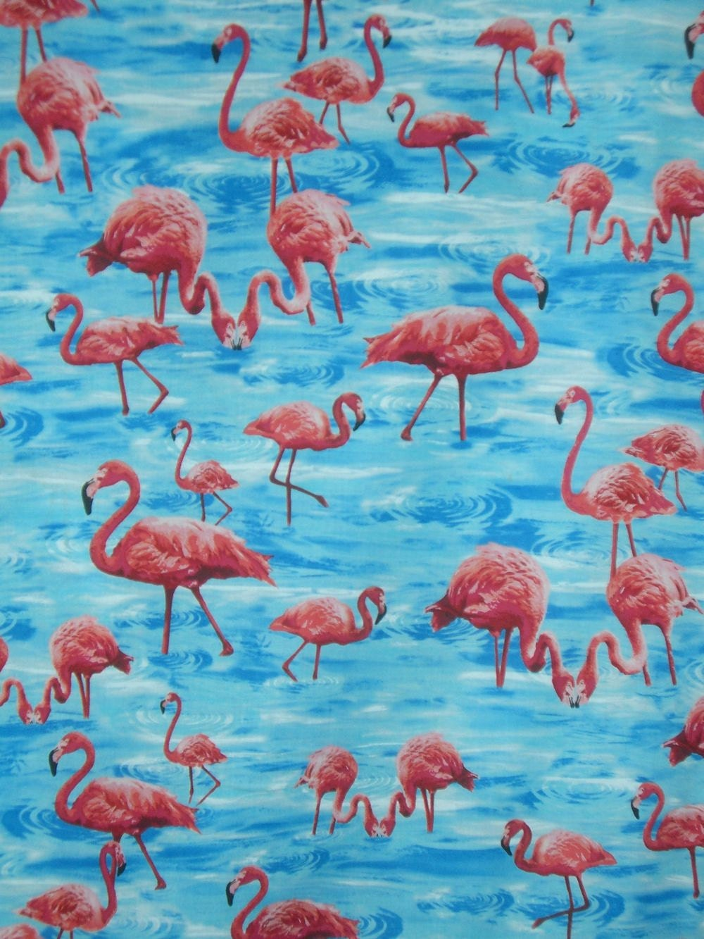 Flamingo Print Pure Cotton Fabric by Timeless TreasuresOne