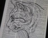 BOGO SALE Cat Dictionary Art Print Cat Print Upcycled Art Print Cat Wall Art Print Kitten Print Vintage Dictionary Book Page Upcycled Art