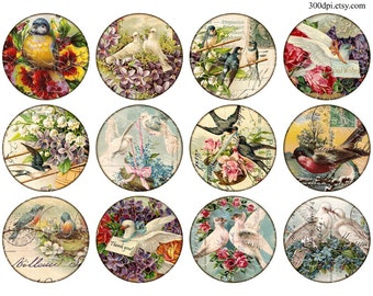 birds postcard carte postale scan Vintage Printable Tags Digital Collage Sheet 2.5 inch circle images round Download and Print