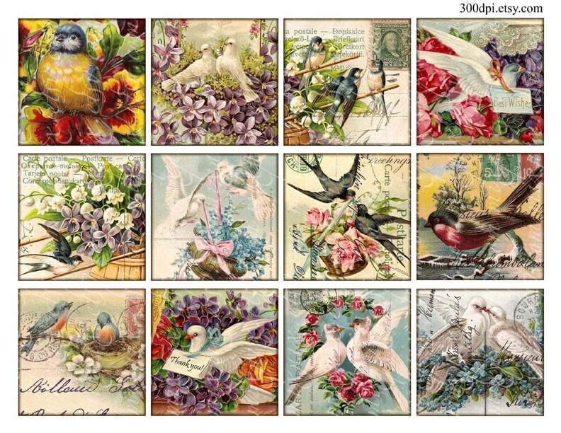 Birds carte postale postcard vintage printable tags digital - Decoupage collage a imprimer ...