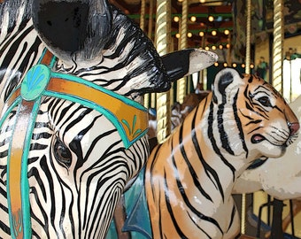Zebra and Tiger on Carousel/Merry Go Round at St. Louis Zoo - 8x10 Photo Art Print for nursery, children's room, play room