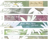 Vintage Daisy Banners, Custom Premade Etsy Shop Banner, Personalize, You Choose the Font, This Way Up Graphics