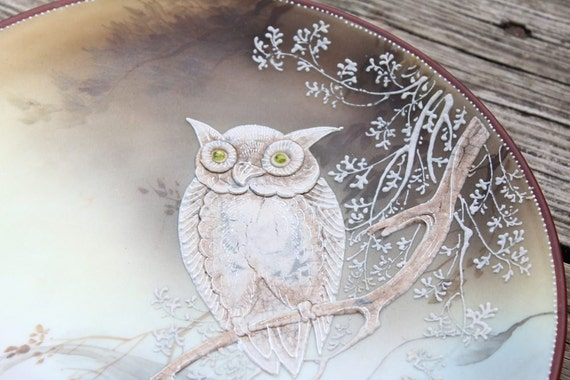 Beautiful Hand-Painted Decorative Owl Plate
