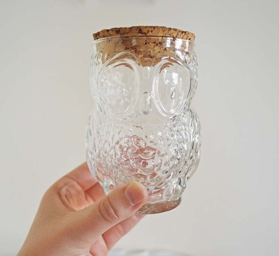 Vintage Glass Owl Cup Jelly Jar with Cork Lid Drinking Glass Bottle Clear Glass Brown Top Halloween Autumn Fall Woodland