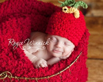 PDF Instant Download Easy Crochet Pattern No 264 Apple Beanie with Worm photo prop sizes preemie, newborn, 0-3, 3-6 months