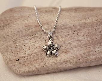 Star Jasmine Flower Charm Necklace - Silver Jasmine Charm Necklace