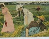 Set of 3 Postcards, Suggestive Postcards, Innuendo, Farm, Maiden, Suggestive, Postcard, Funny