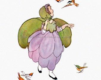 Flower Fairy Card - Hepatica with Birds - Repro Janet Laura Scott