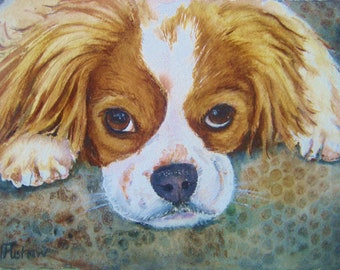 watercolor of King Charles Spaniel, original, commission, pet portraits , custom dog painting