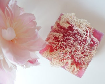 ALOE VERA LOOFAH, Soap Colored in Raspberry, Scented in Black Raspberry Vanilla, Vegetable Based, Handmade