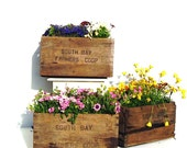 Vintage Wooden Crate Rustic Flower Planter Box 1960s