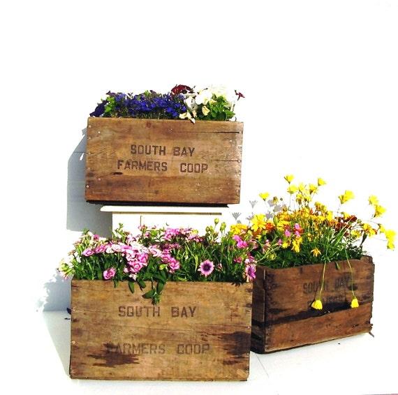 Wood Storage Bins Wooden Crates