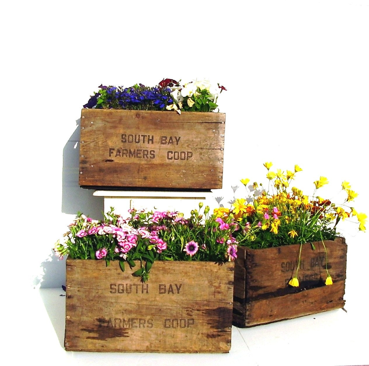 Vintage wooden crate rustic flower planter box 1960s - Wooden containers for flowers ...