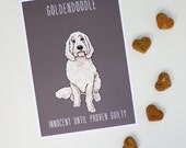 Guilty Goldendoodle Print Modern Dog Art