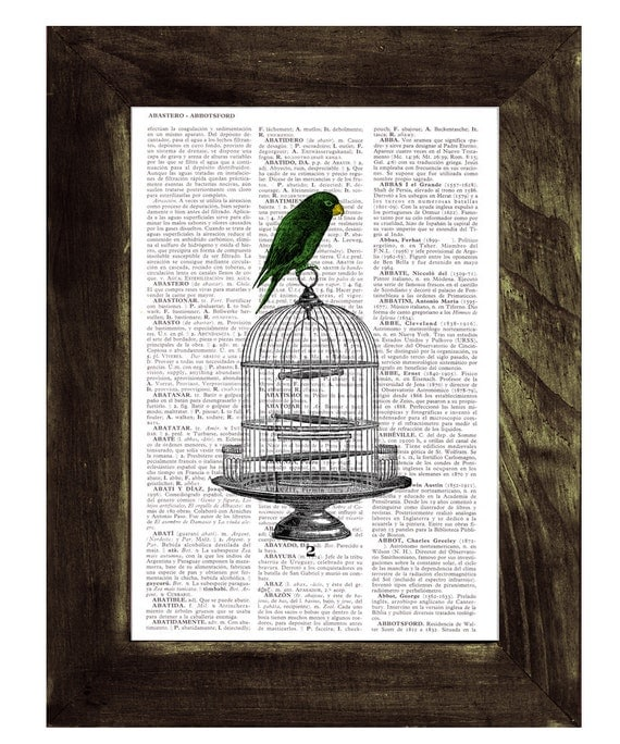 Spring Sale Vintage Cage with Parrot on Vintage Dictionary Book altered art dictionary page illustration book print  art BPAN077
