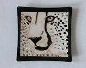 "Square Cheetah Plate 6.9"""