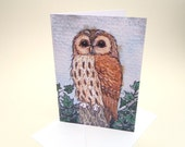Greetings card of a brown owl from an original illustration