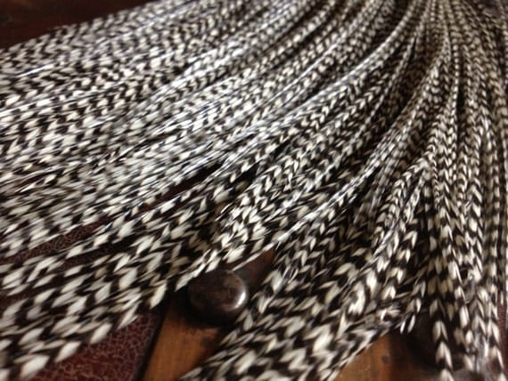 Grizzly Feather Extensions Black and White Zig Zag 10 MEDIUM Long Hair Feathers Loose Plumes Natural Feather Hair Extensions