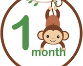 Monkey monthly iron on sticker decal transfer baby boy jungle baby shower gift