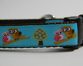 Teal Blue Owl Dog Collar- What a Hoot