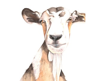 Goat painting  - print of watercolor painting A4 print wall art print - animal art print
