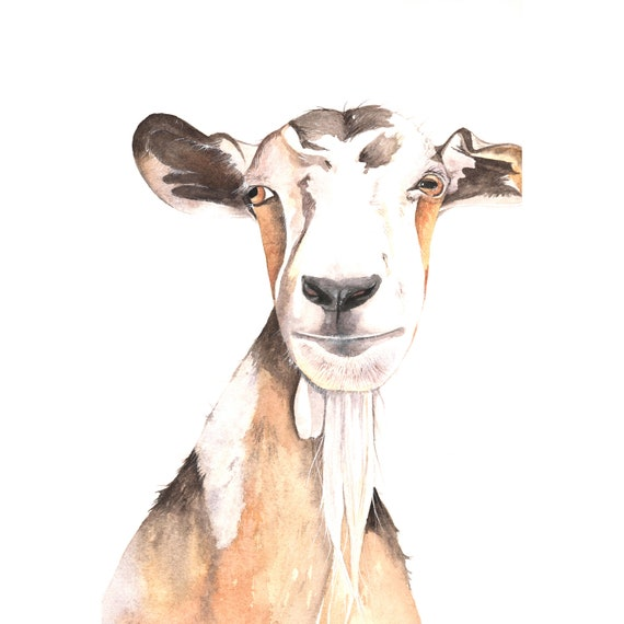 Goat painting  - print of watercolor painting A4 print wall art print - animal art print