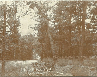 In The Woods by Scheuer - Artist Signed - Sepia1900s Vintage Real Photograph Postcard RPP