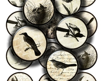 Vintage bird pictures  illustrations, old paper background  Circles 1in, 2in -  Digital Collage Sheet, Download for Resin Pendant 105