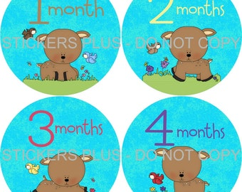 Baby Month Stickers Plus FREE Gift Girl Monthly Milestone Stickers Deer Fawn Flowers Meadow Woodland Forest 1-12 m Baby Monthly Age Stickers