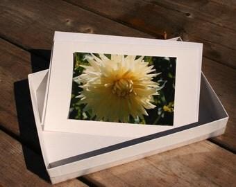 Photo Card Box Set - Great Gift Idea