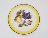 RESERVED Mikasa Bounty Country Casuals Dinner Plate Set of 8 C3301