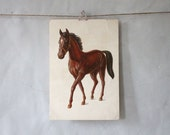 H is for Horse : Extra Large Vintage Alphabet Flash Card