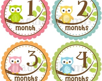 Monthly Baby Girl Stickers, Baby Month Stickers Girl, Monthly Bodysuit Sticker, Monthly Stickers Baby Shower Gift Owls (Avery)
