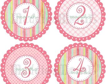 Monthly Baby Stickers, Baby Girl Month Stickers, Milestone Stickers, Baby Month Stickers, Monthly Bodysuit Sticker, Baby Shower Gift(Britt)