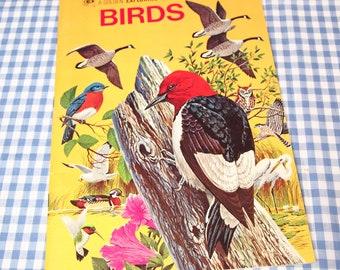 birds - a golden earth exploring book, vintage 1973 children's book