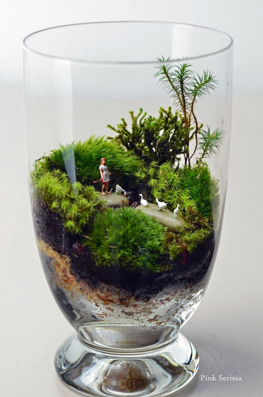 moos terrarium mit m dchen und g nse in miniatur apotheke glas. Black Bedroom Furniture Sets. Home Design Ideas