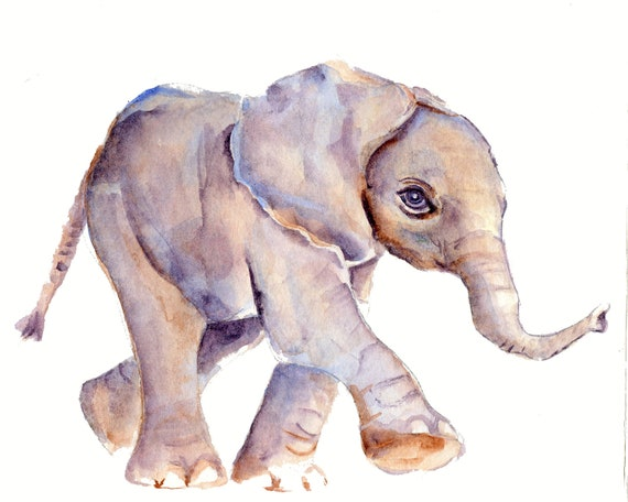 Baby Elephant print from original watercolor