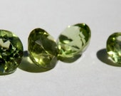 Peridot Gemstones. Lot of 6. Round cuts. 5 to 6mm each. - DanPickedMinerals
