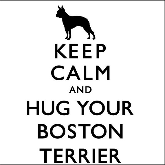 items similar to keep calm and hug your boston terrier ladies t shirt on etsy - Boston Terrier Coloring Page