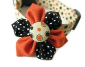 PUMPKIN SPICE Dog Collar and Bow Set - Available in All Sizes - Get your Pup ready for the Fall