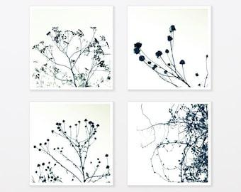 "Tree Photo Print Set 8x8"" to 40x40"" Zen art Botanicals Black and White Photos Minimalist Art bathroom wall art"