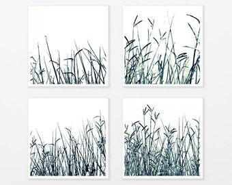 "Nature Photo Print Set 8x8"" 11x14"" to 40x40"" Black and White Zen art Grass Botanical Art Minimalist trendy man, living room wall art"