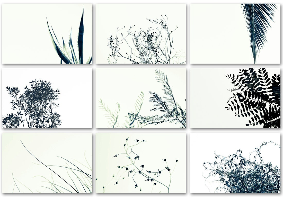 Nine Framable Photo Cards Set Black and White nature by DUEALBERI: https://www.etsy.com/listing/116923324/nine-framable-photo-cards...