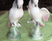 Vintage Cockatoos -Royal Dux Style